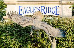 Eagles Ridge HOA-14.jpg