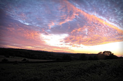 Sunset at Bradgate 1