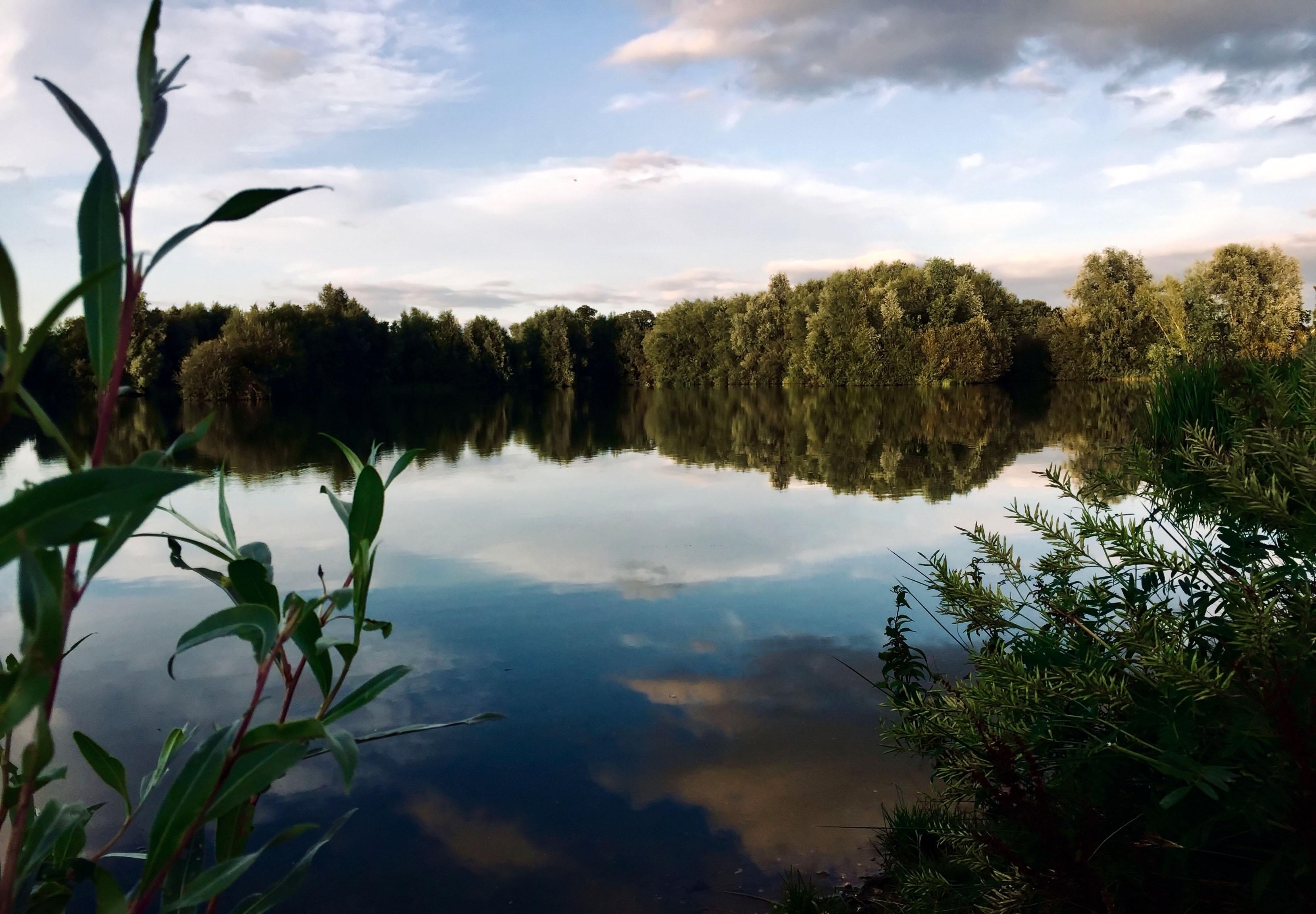 Watermead nature reserve 2