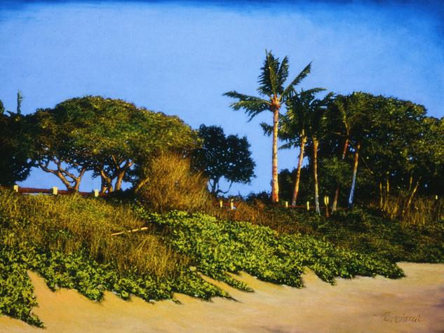 Island Palms, Maui