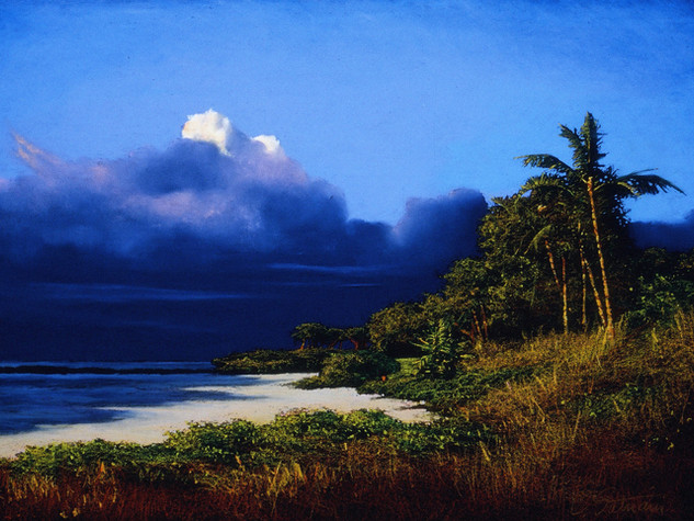 Island Reverie