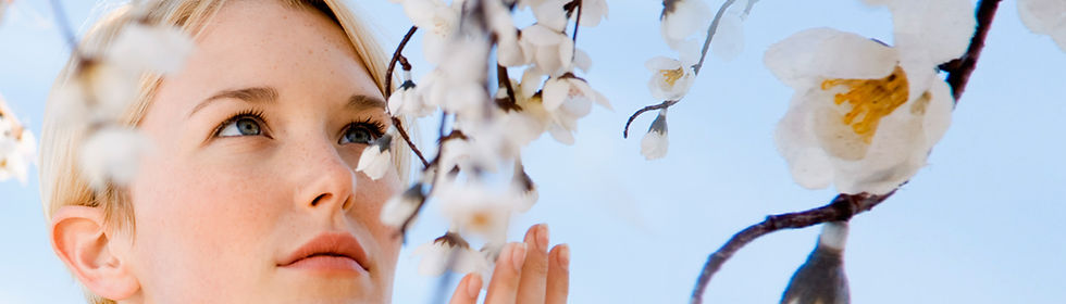 Flores tocantes
