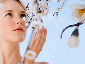 Allergies respiratoires, les prévenir, les gérer