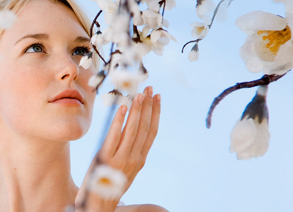 Meditación :: Caminar en la Belleza