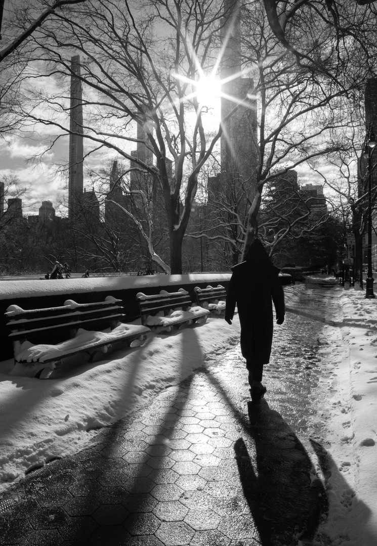 Central Park Man Shadow Benches.jpg