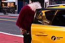 Fluffy taxi.jpg