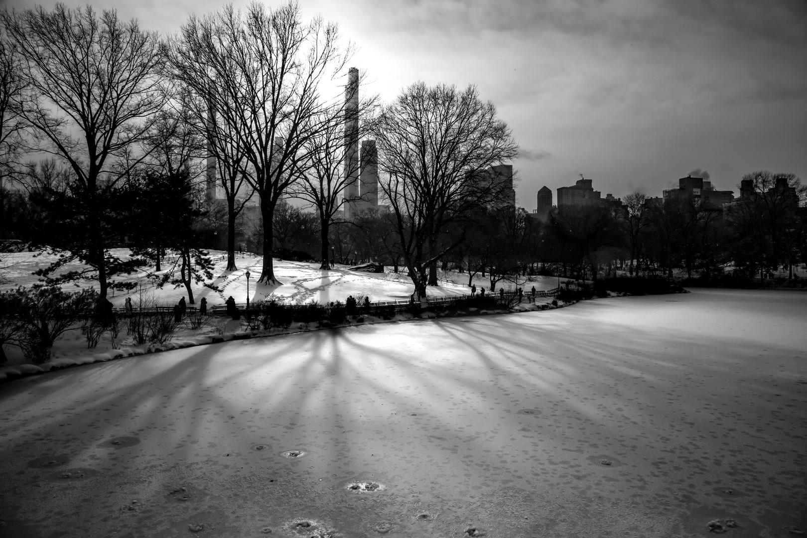 Frozen Central Park Lake, Manhattan.