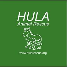 hula.png