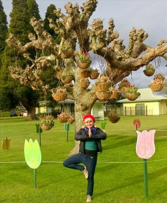 the tree pose new zealand - yoga teacher