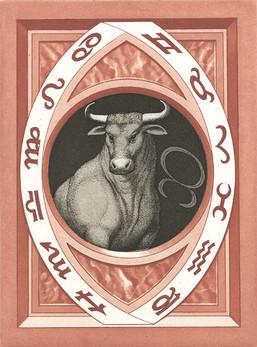 Stier (Taurus)