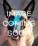 PDB_ Image Coming Soon.jpg