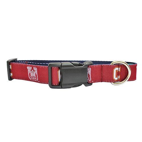 College of Charleston Dog Collar