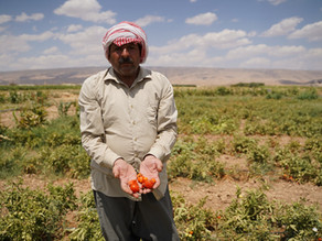 Water crisis ravages Middle East