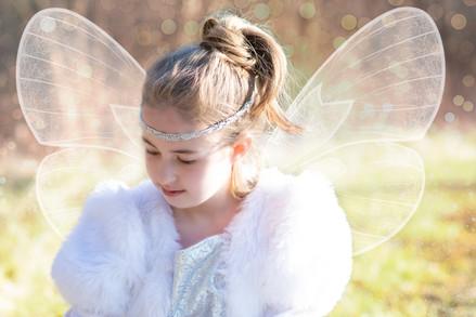 Glitter Gold & White Fairy