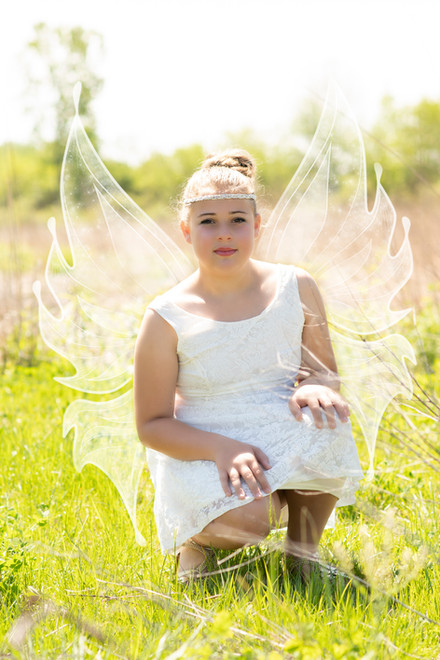Magestic Fairy 2