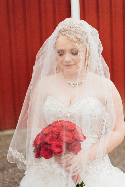 Rebecca Anne Photography