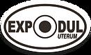 expodul-logo.png