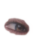 eye1_edited.png