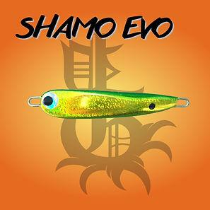 SHAMO EVO.jpg