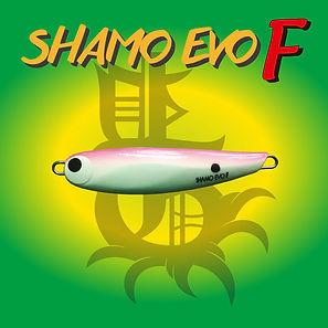 SHAMO EVO F.jpg