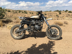 Triumph Scrambler Desert Sled 1