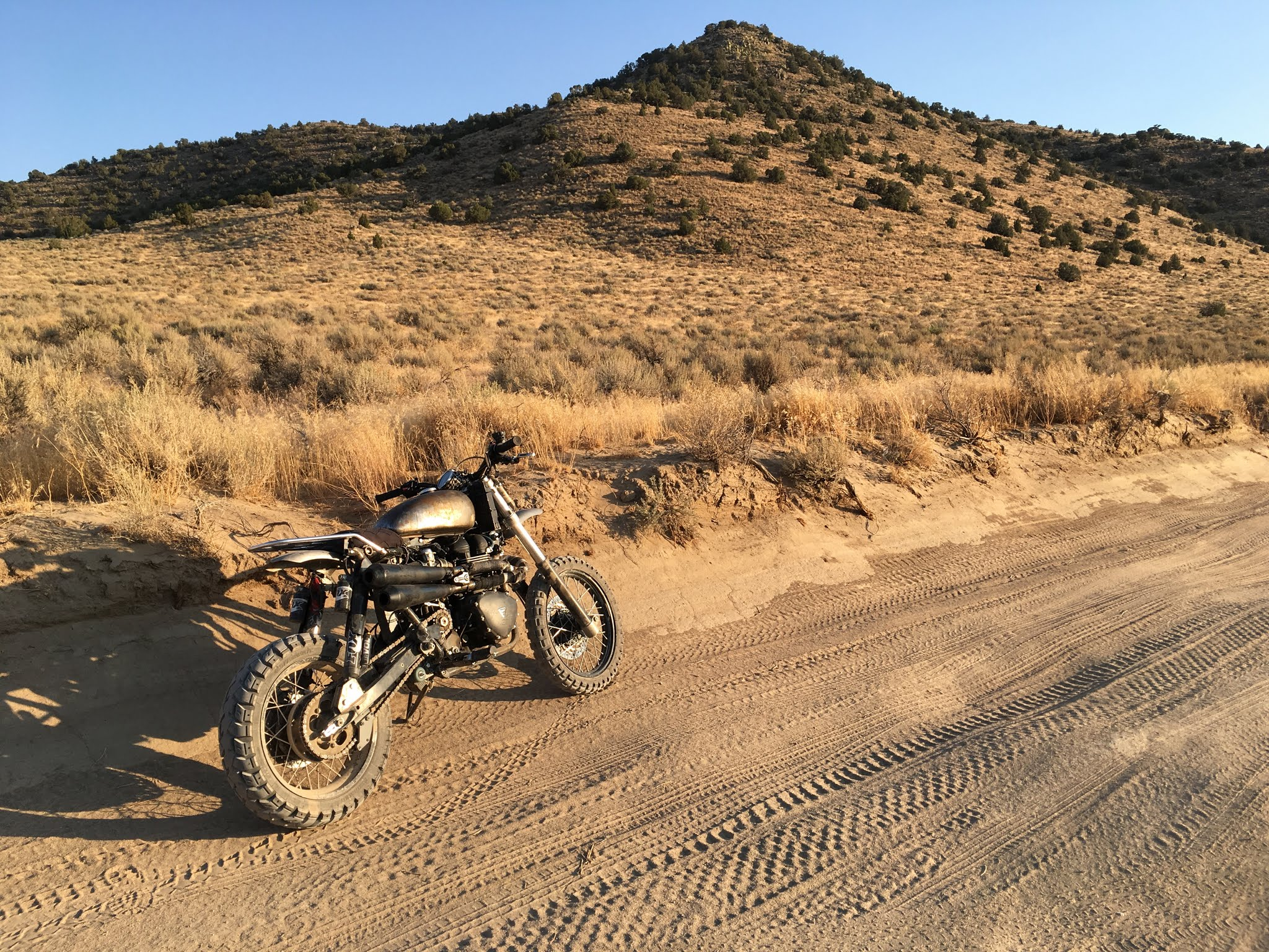 Triumph Scrambler Desert Sled 2