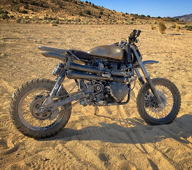 #DesertSeason is finally here again! 77deg in the #Reno high desert