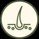 網頁icon-07.png