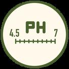 網頁icon-06.png