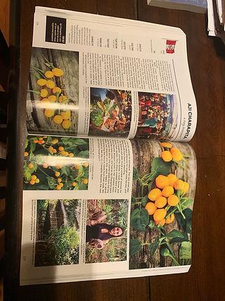 Baker Creek Heirloom Seeds Whole Seed Catalog