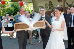 Pigeons fly wedding