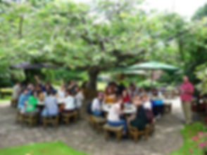 Dining under the Japanese Cherry Tree