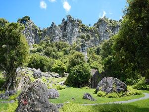 Waitomo Caves Tours & Transfers - Full Day Tours