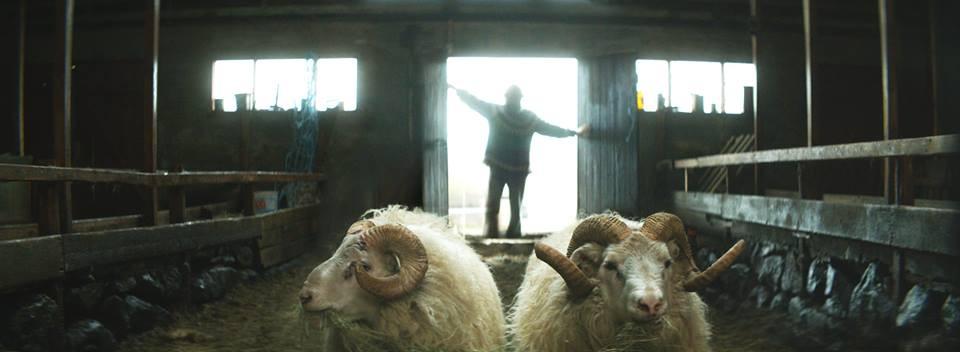 Rams film review UK