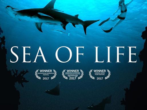 Sea of Life documentary film