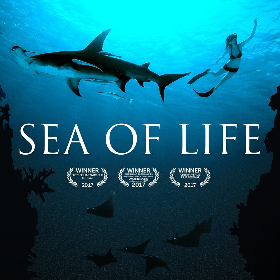 Sea of Life indie film reivew