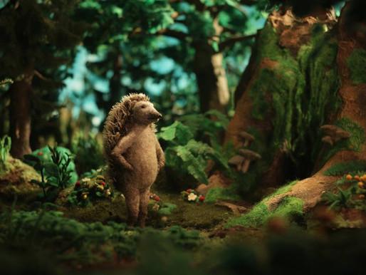 Hedgehog's Home short animated film