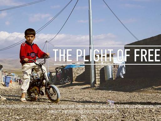 The Plight of Freedom short film