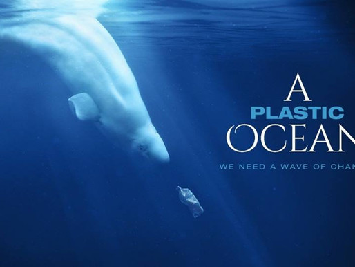A Plastic Ocean documentary