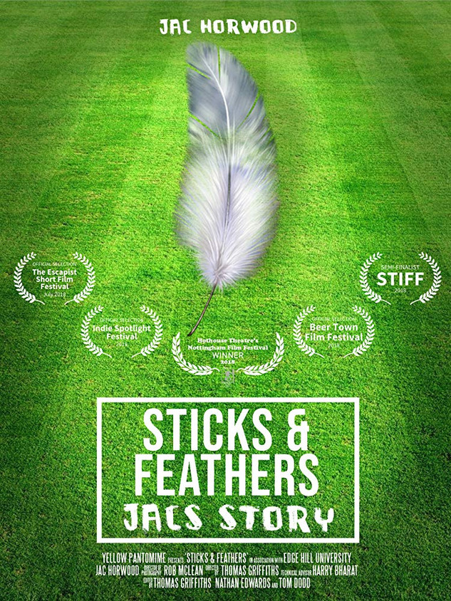 Sticks and Feathers