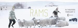 Rams film review