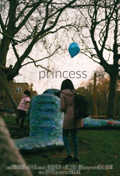 Movie Poster for Princess film