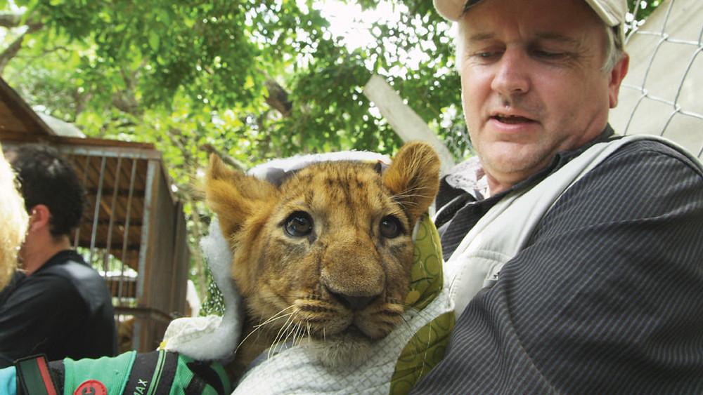 Lion Ark documentary film review