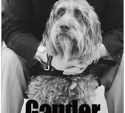Gander: America's Hero Dog documentary