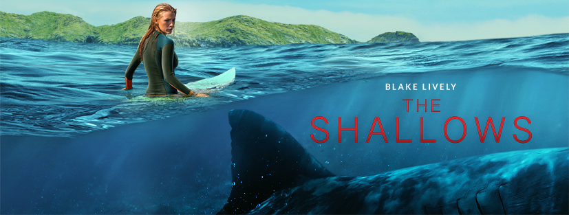 The Shallows film review