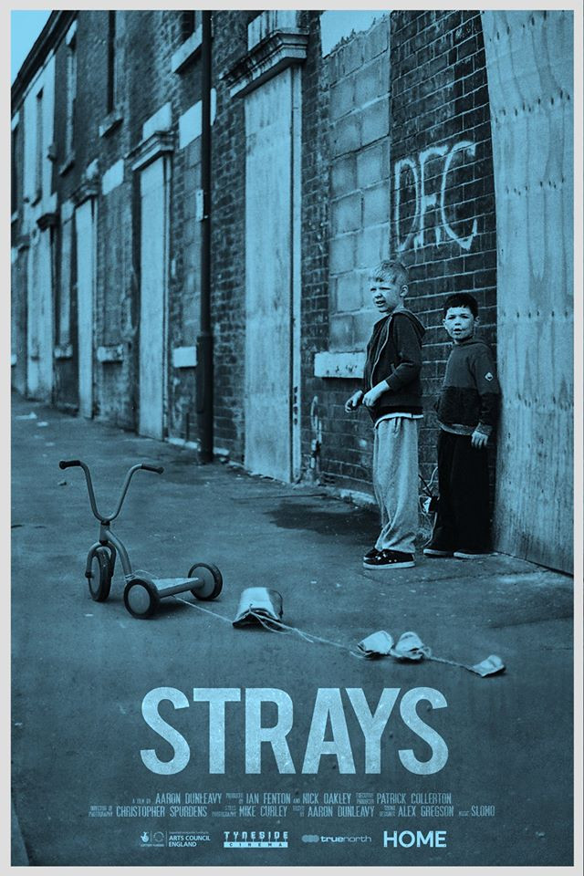 Strays short film review