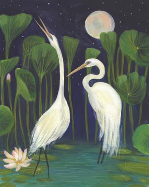 Midnight Egrets