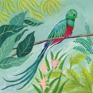 Queztal Bird