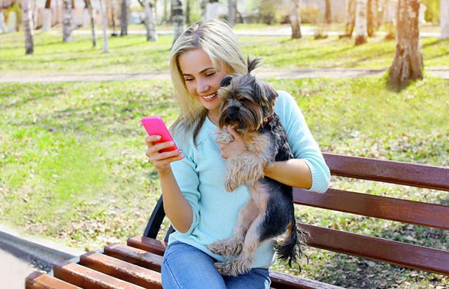 6 melhores aplicativos de iPhone para quem ama cachorros