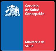 logos-DSSC-2018.png